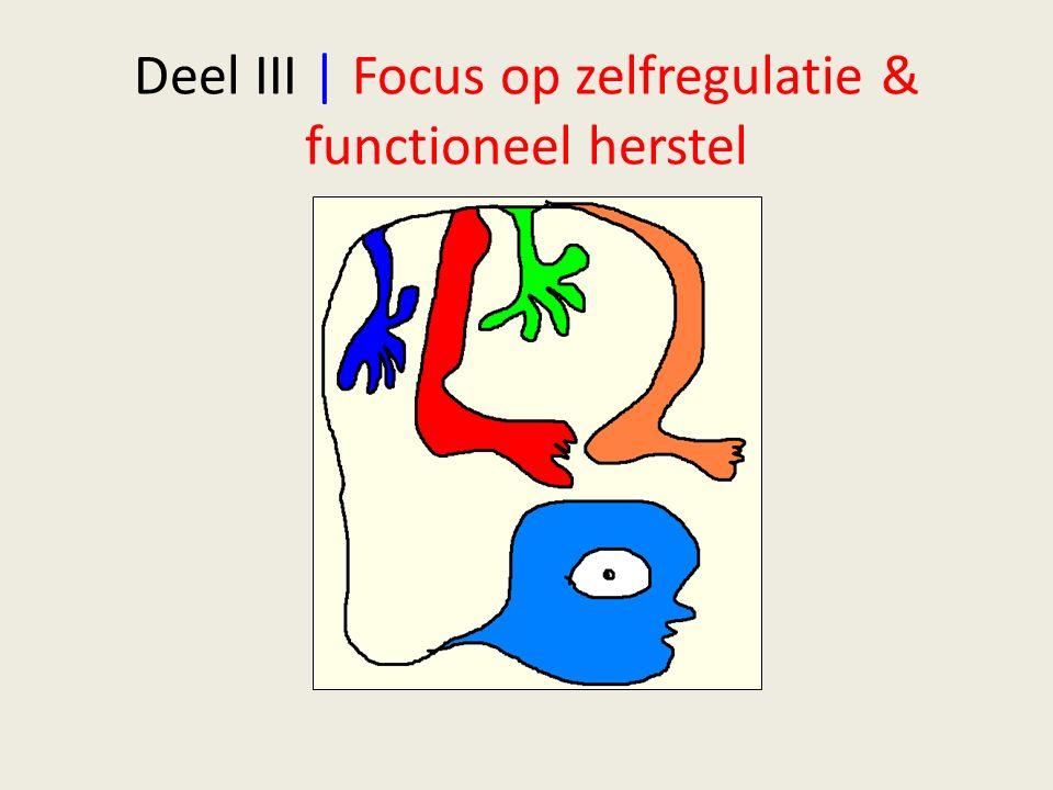 Deel III | Focus op zelfregulatie & functioneel herstel