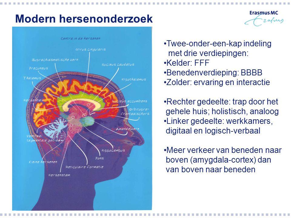 Modern hersenonderzoek Twee-onder-een-kap indeling met drie verdiepingen: Kelder: FFF Benedenverdieping: BBBB Zolder: ervaring en interactie Rechter g