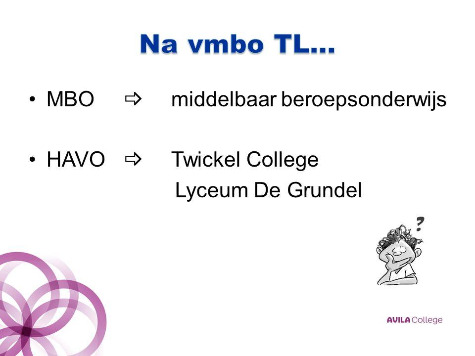 MBO  middelbaar beroepsonderwijs HAVO  Twickel College Lyceum De Grundel
