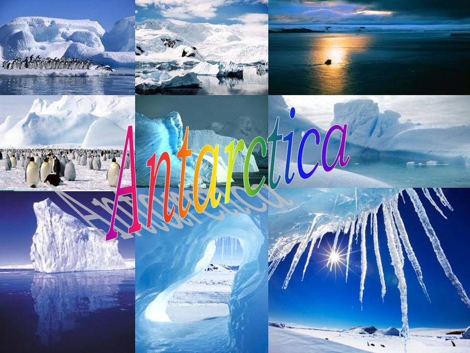 INHOUD Ligging Antarctica Youtube : Antarctica Naam Geschiedenis Beschrijving continent Klimaat Poollicht Leven Onderzoek Het verdrag Toerisme Seizoenen Gletsjers