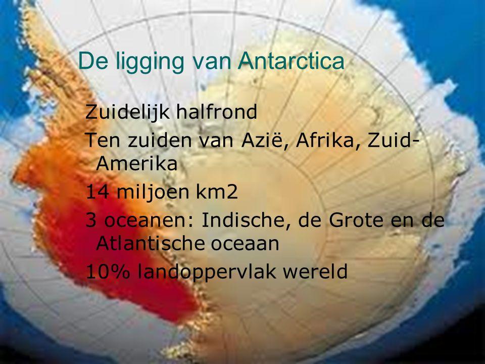 De ligging van Antarctica Zuidelijk halfrond Ten zuiden van Azië, Afrika, Zuid- Amerika 14 miljoen km2 3 oceanen: Indische, de Grote en de Atlantische