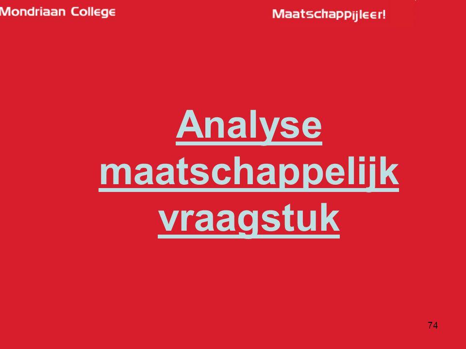 74 Analyse maatschappelijk vraagstuk