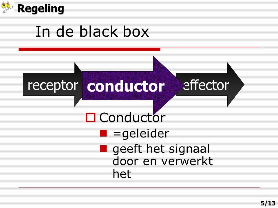 In de black boxRegeling receptorconductoreffector  Conductor =geleider geeft het signaal door en verwerkt het conductor 5/13