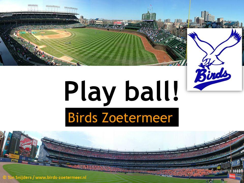 Play ball! Birds Zoetermeer © Ton Snijders / www.birds-zoetermeer.nl