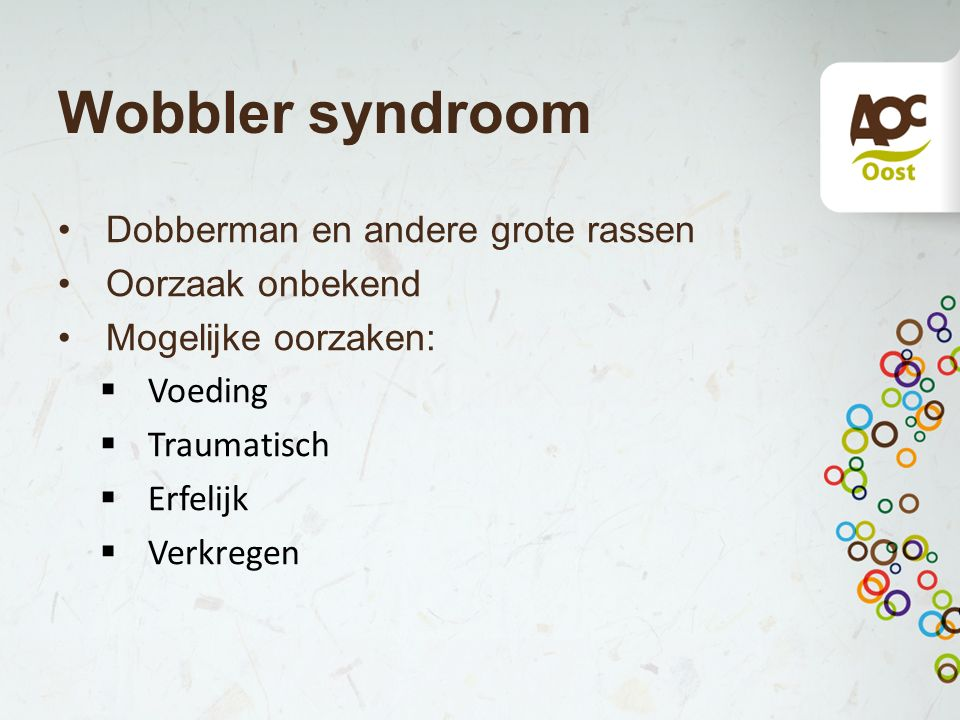 Dobberman en andere grote rassen Oorzaak onbekend Mogelijke oorzaken:  Voeding  Traumatisch  Erfelijk  Verkregen