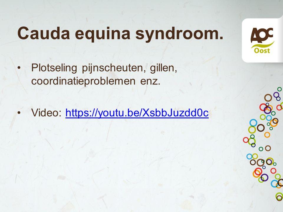 Cauda equina syndroom. Plotseling pijnscheuten, gillen, coordinatieproblemen enz. Video: https://youtu.be/XsbbJuzdd0chttps://youtu.be/XsbbJuzdd0c