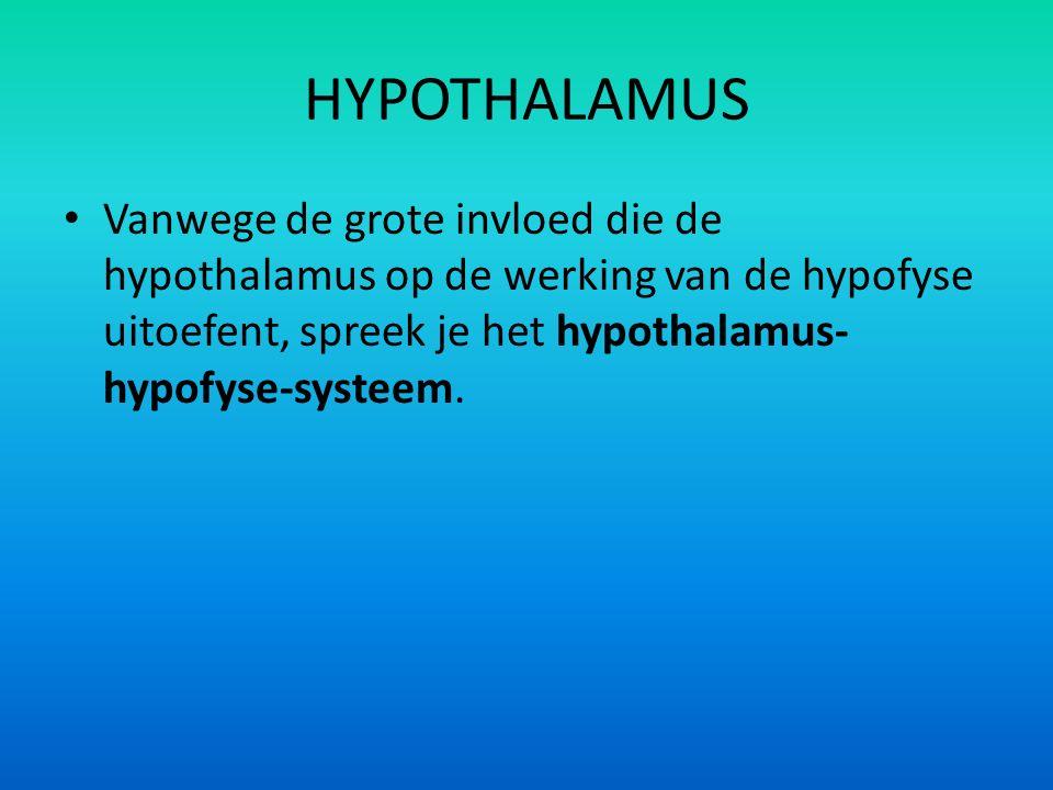 HYPOTHALAMUS Vanwege de grote invloed die de hypothalamus op de werking van de hypofyse uitoefent, spreek je het hypothalamus- hypofyse-systeem.