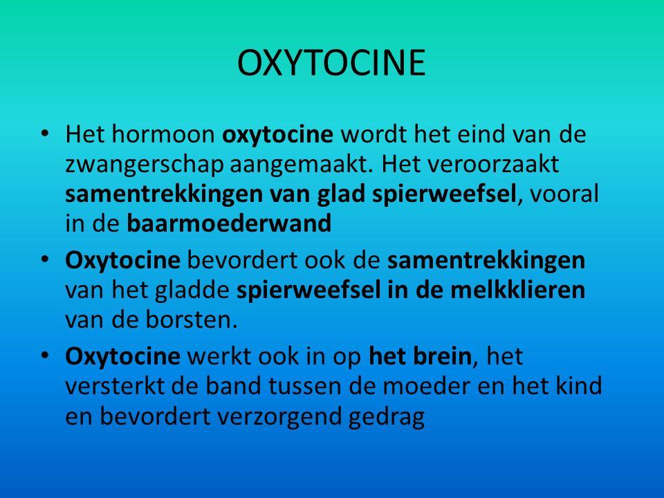 OXYTOCINE Het hormoon oxytocine wordt het eind van de zwangerschap aangemaakt. Het veroorzaakt samentrekkingen van glad spierweefsel, vooral in de baa