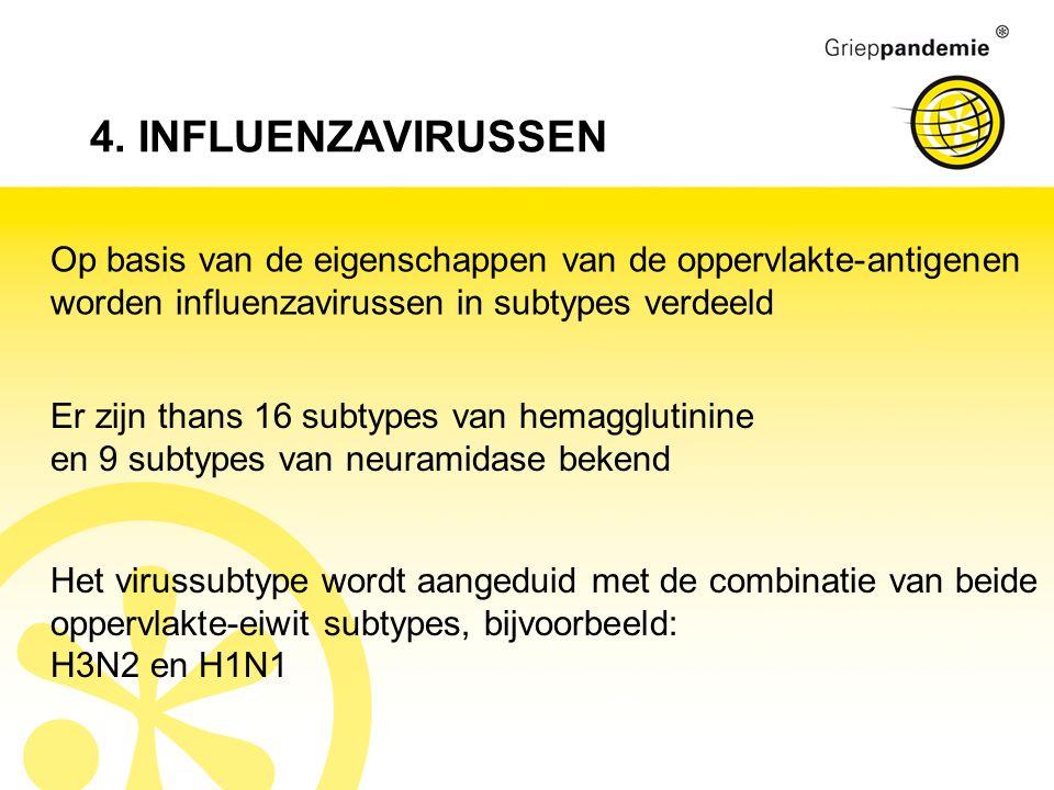 4. INFLUENZAVIRUSSEN Op basis van de eigenschappen van de oppervlakte-antigenen worden influenzavirussen in subtypes verdeeld Er zijn thans 16 subtype