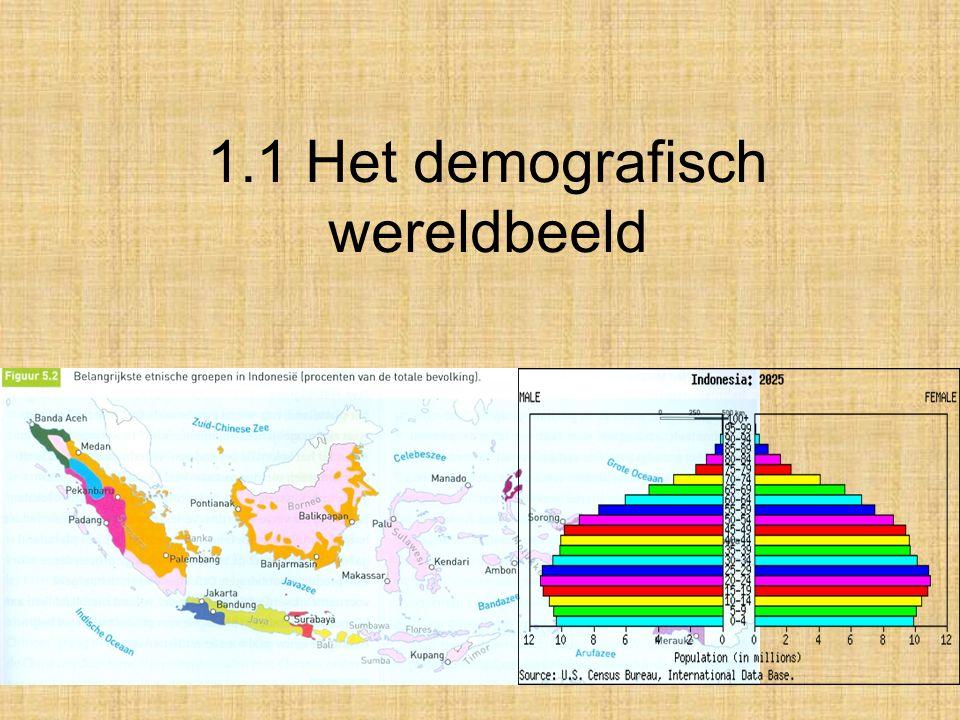 1.1 Het demografisch wereldbeeld