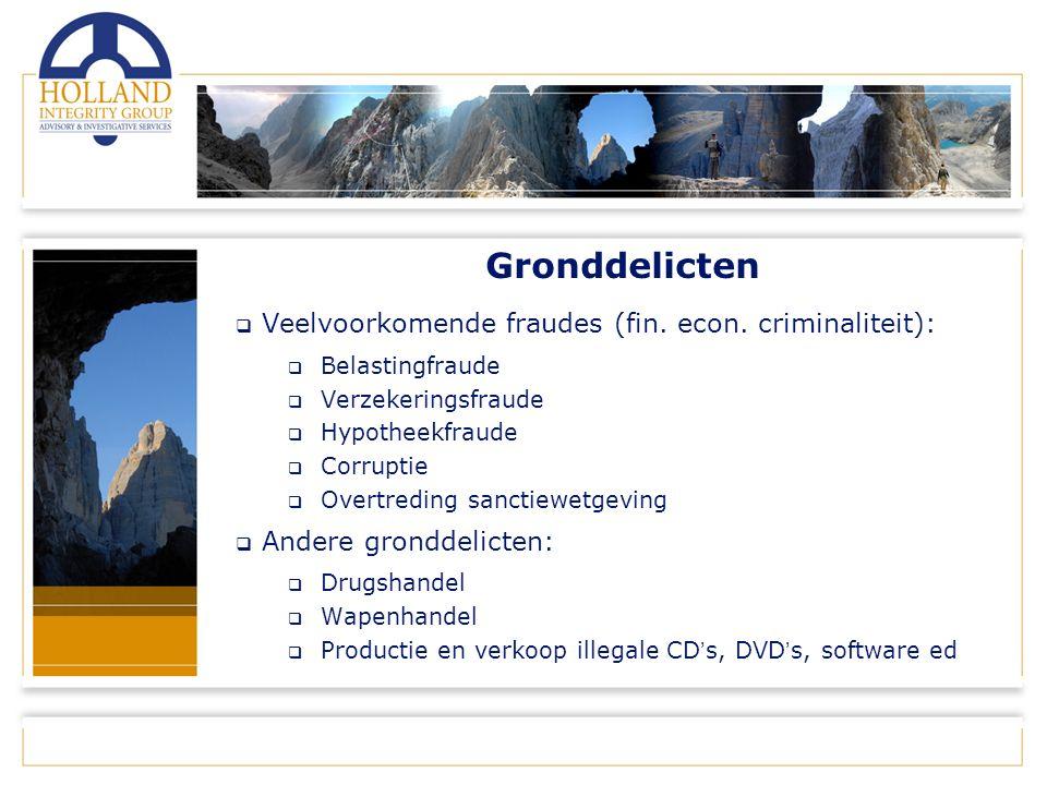 Gronddelicten  Veelvoorkomende fraudes (fin. econ.