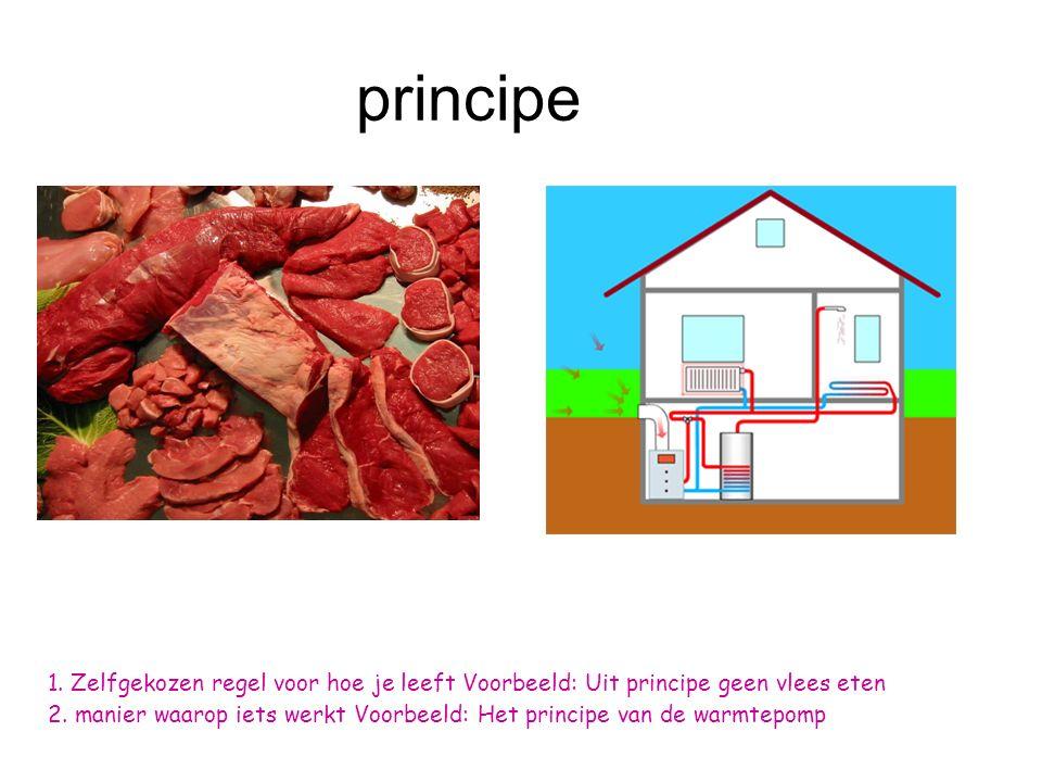 principe 1.Zelfgekozen regel voor hoe je leeft Voorbeeld: Uit principe geen vlees eten 2.