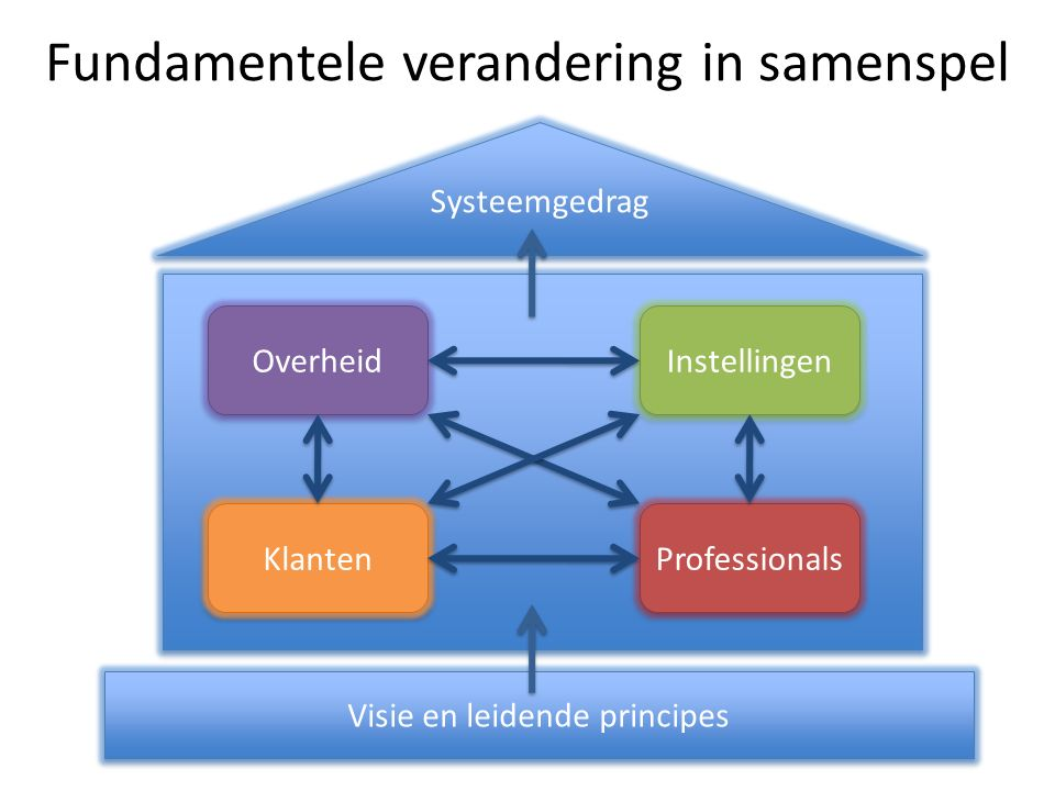 Overheid Klanten Professionals Instellingen Systeemgedrag Visie en leidende principes Fundamentele verandering in samenspel