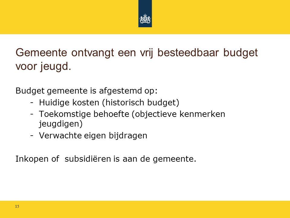 Gemeente ontvangt een vrij besteedbaar budget voor jeugd.
