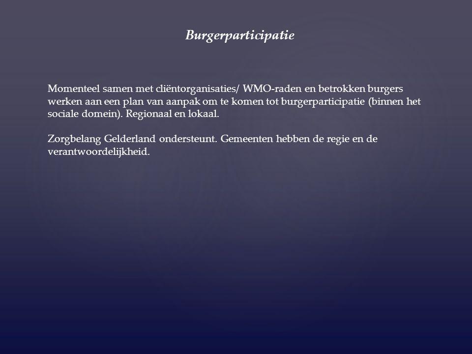 Samenwerkingspartners: De Cliëntenraad BJZ (Bureau Jeugdzorg Gelderland) – voor het geven van trainingen aan Brigadeleden.