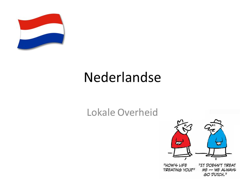 Nederlandse Lokale Overheid