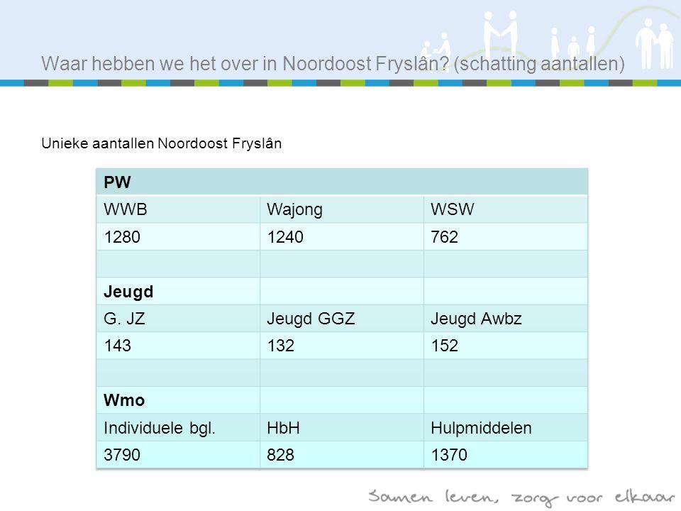Waar hebben we het over in Noordoost Fryslân.