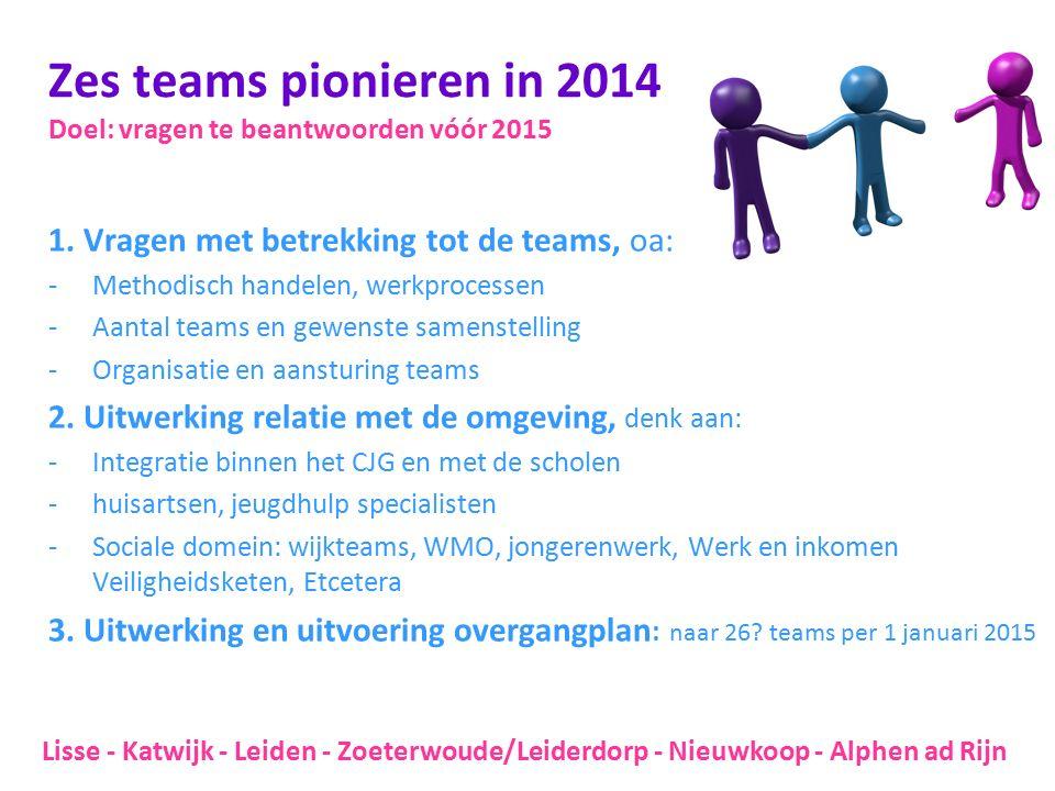 Zes teams pionieren in 2014 Doel: vragen te beantwoorden vóór 2015 1. Vragen met betrekking tot de teams, oa: -Methodisch handelen, werkprocessen -Aan