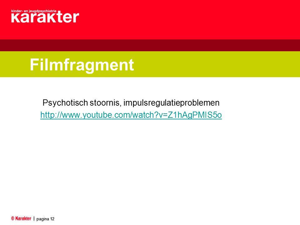 © Karakter |pagina 12 © Karakter | pagina 12 Filmfragment Psychotisch stoornis, impulsregulatieproblemen http://www.youtube.com/watch?v=Z1hAgPMIS5o