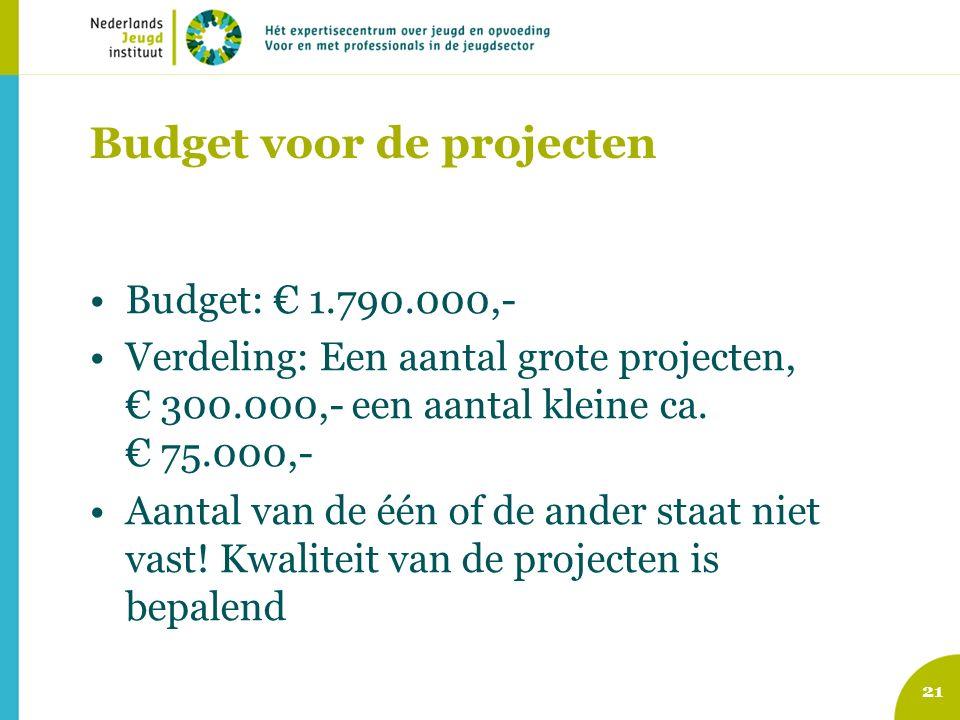 Budget voor de projecten Budget: € 1.790.000,- Verdeling: Een aantal grote projecten, € 300.000,- een aantal kleine ca.