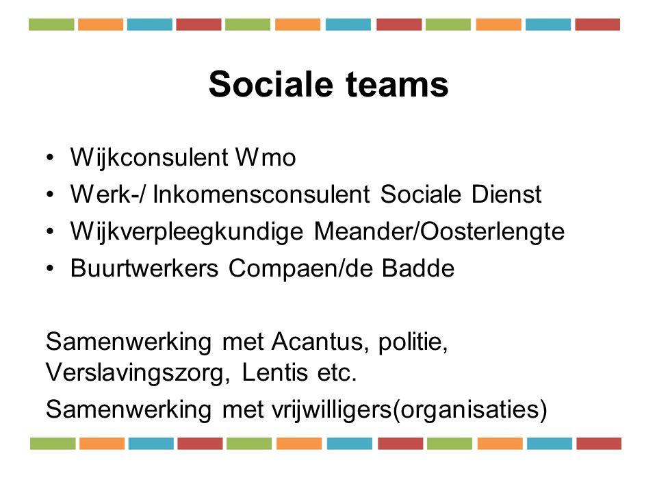 Sociale teams Wijkconsulent Wmo Werk-/ Inkomensconsulent Sociale Dienst Wijkverpleegkundige Meander/Oosterlengte Buurtwerkers Compaen/de Badde Samenwerking met Acantus, politie, Verslavingszorg, Lentis etc.