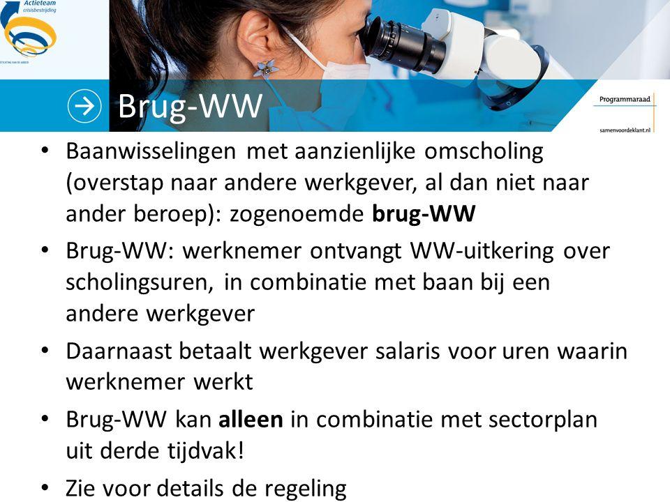Brug-WW Baanwisselingen met aanzienlijke omscholing (overstap naar andere werkgever, al dan niet naar ander beroep): zogenoemde brug-WW Brug-WW: werkn