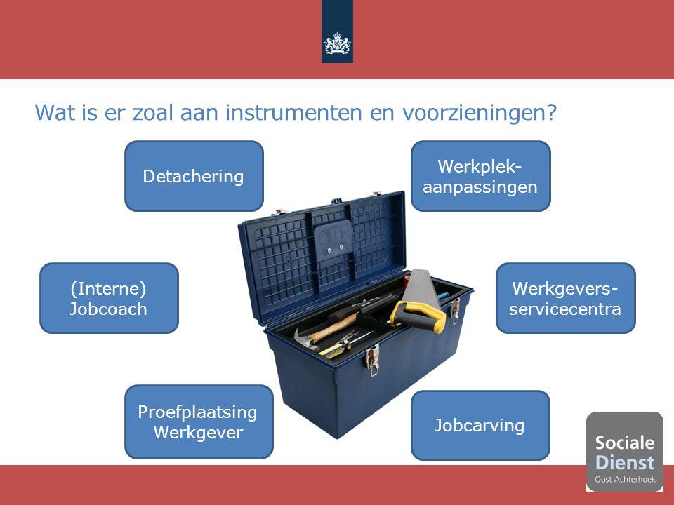 9 Werkplek- aanpassingen Detachering Werkgevers- servicecentra Jobcarving (Interne) Jobcoach Proefplaatsing Werkgever Wat is er zoal aan instrumenten en voorzieningen