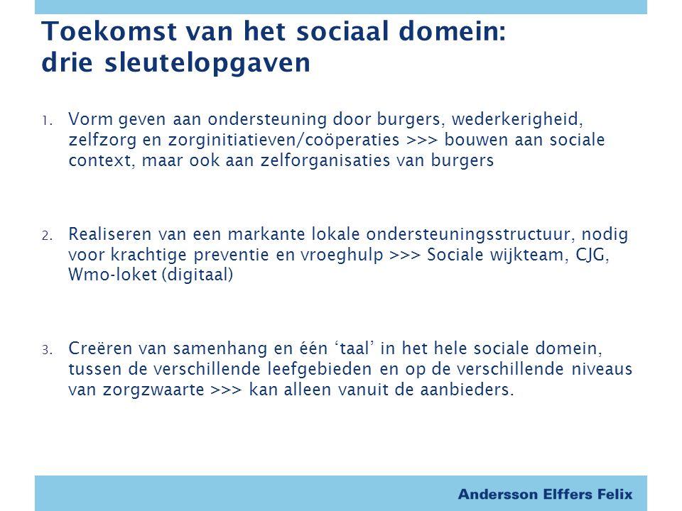Toekomst van het sociaal domein: drie sleutelopgaven 1.