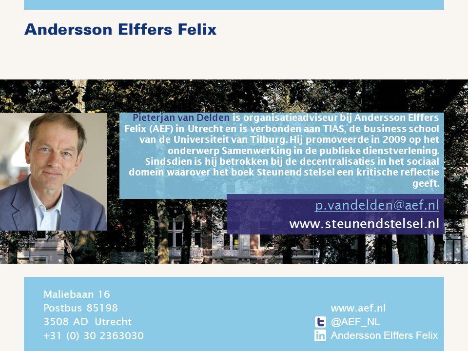 Pieterjan van Delden is organisatieadviseur bij Andersson Elffers Felix (AEF) in Utrecht en is verbonden aan TIAS, de business school van de Universiteit van Tilburg.