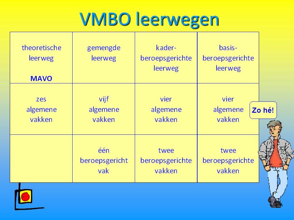 Welke sectoren zijn er in het VMBO? Techniek Zorg en Welzijn Economie Landbouw (groen)