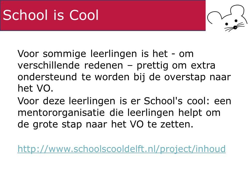 School is Cool Voor sommige leerlingen is het - om verschillende redenen – prettig om extra ondersteund te worden bij de overstap naar het VO. Voor de