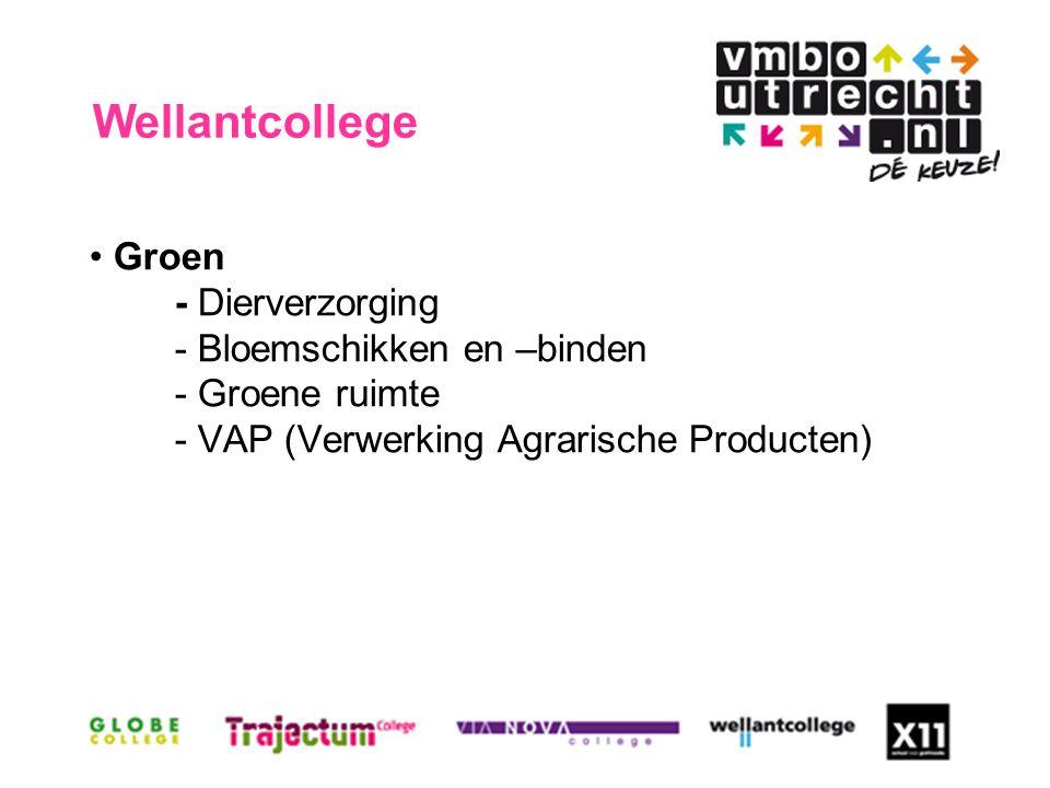 Groen - Dierverzorging - Bloemschikken en –binden - Groene ruimte - VAP (Verwerking Agrarische Producten) Wellantcollege
