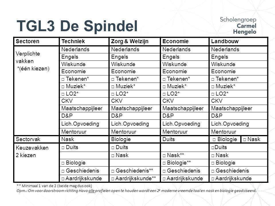 TGL3 De Spindel SectorenTechniekZorg & WelzijnEconomieLandbouw Verplichte vakken *(één kiezen) Nederlands Engels Wiskunde Economie □ Tekenen* □ Muziek