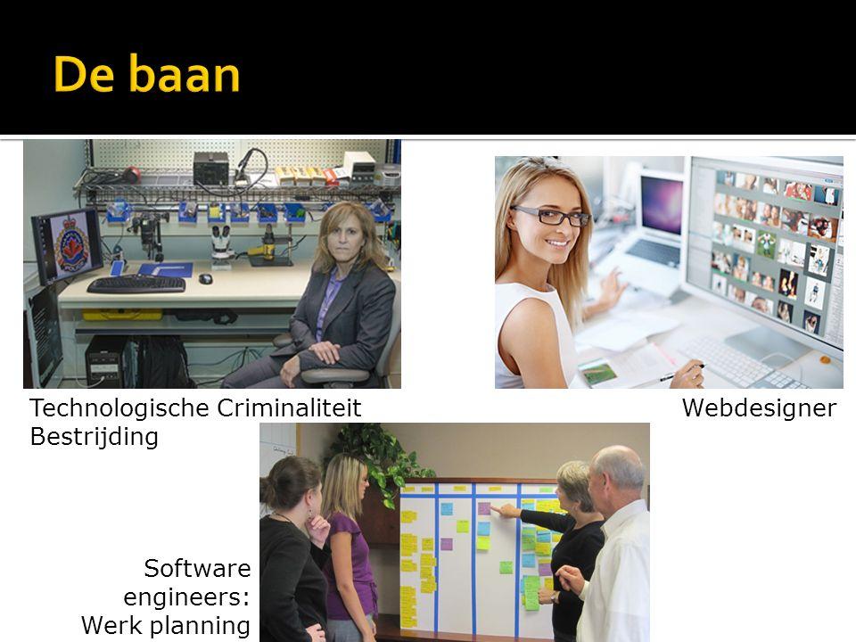 Software engineers: Werk planning WebdesignerTechnologische Criminaliteit Bestrijding