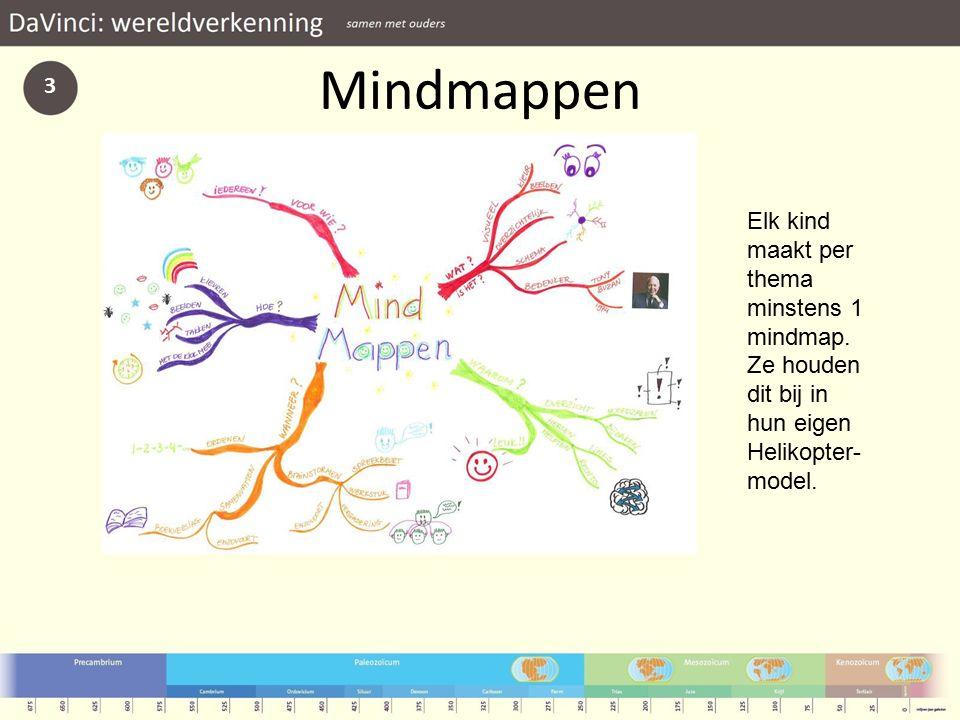 Mindmappen 3 Elk kind maakt per thema minstens 1 mindmap.