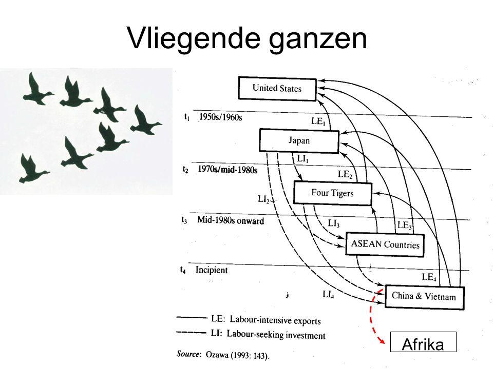 Vliegende ganzen Afrika