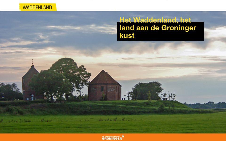 Het Waddenland, het land aan de Groninger kust