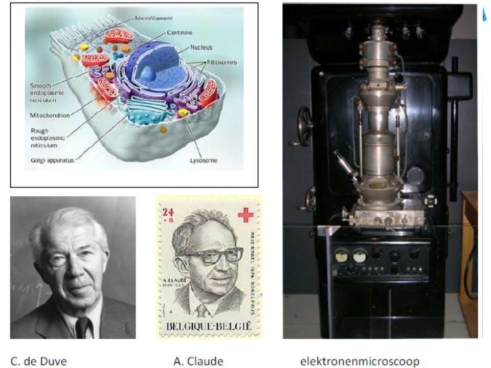Uitgangspunten Techniek en wetenschap: – een voortdurende interactie