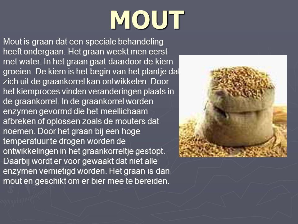 MOUT Mout is graan dat een speciale behandeling heeft ondergaan.