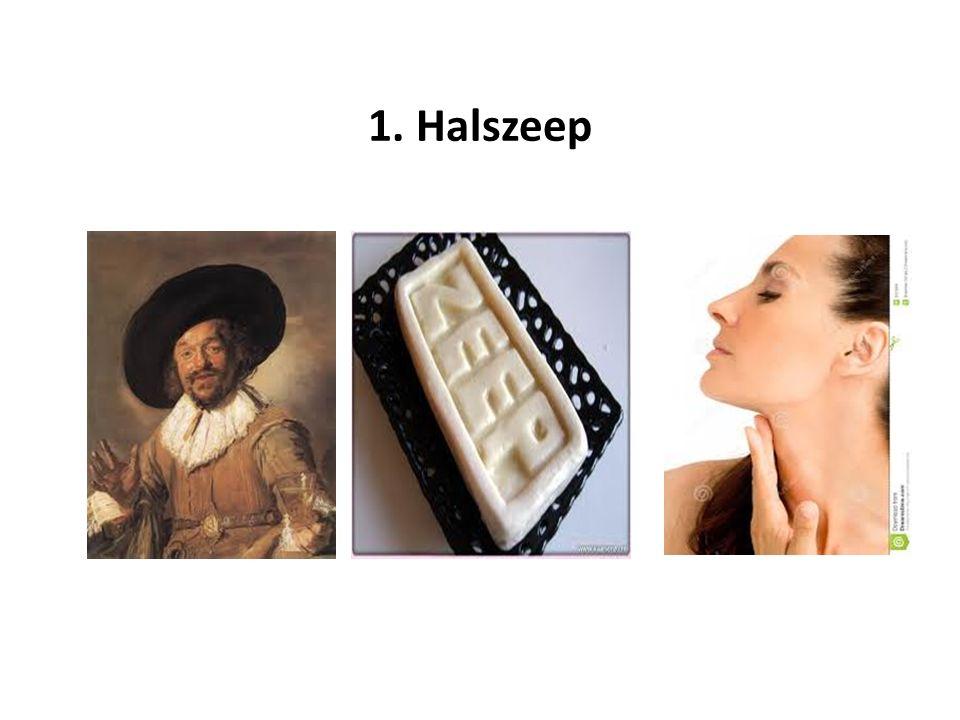 1. Halszeep