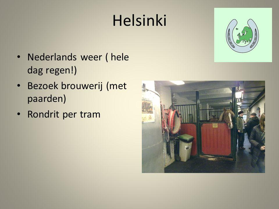 Nederlands weer ( hele dag regen!) Bezoek brouwerij (met paarden) Rondrit per tram