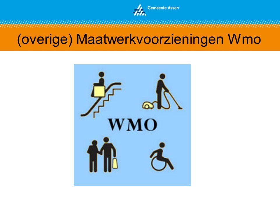 (overige) Maatwerkvoorzieningen Wmo