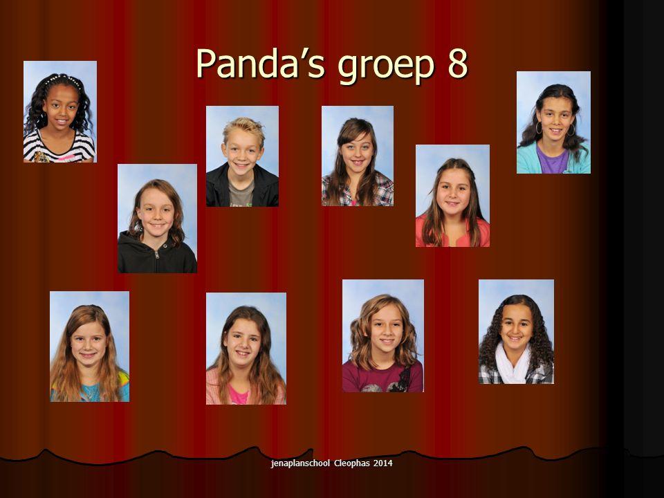 Panda's groep 8 jenaplanschool Cleophas 2014