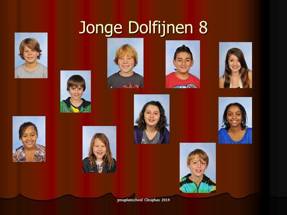 Jonge Dolfijnen 8 jenaplanschool Cleophas 2014