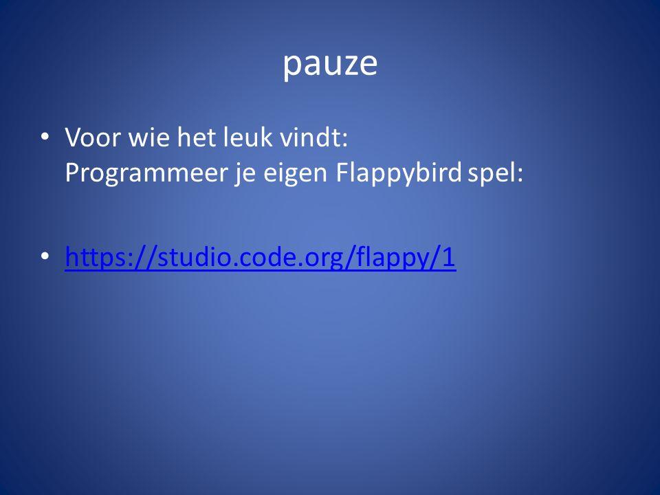 pauze Voor wie het leuk vindt: Programmeer je eigen Flappybird spel: https://studio.code.org/flappy/1