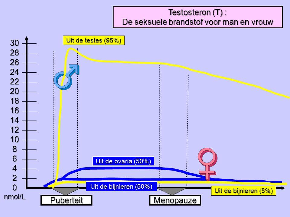 Uit de testes (95%) 302826242220181614121086420nmol/L PuberteitMenopauze Testosteron (T) : De seksuele brandstof voor man en vrouw Uit de ovaria (50%)