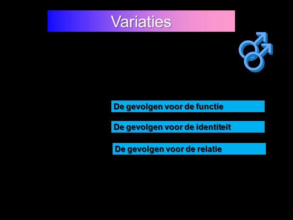 Variaties De gevolgen voor de functie De gevolgen voor de relatie De gevolgen voor de identiteit