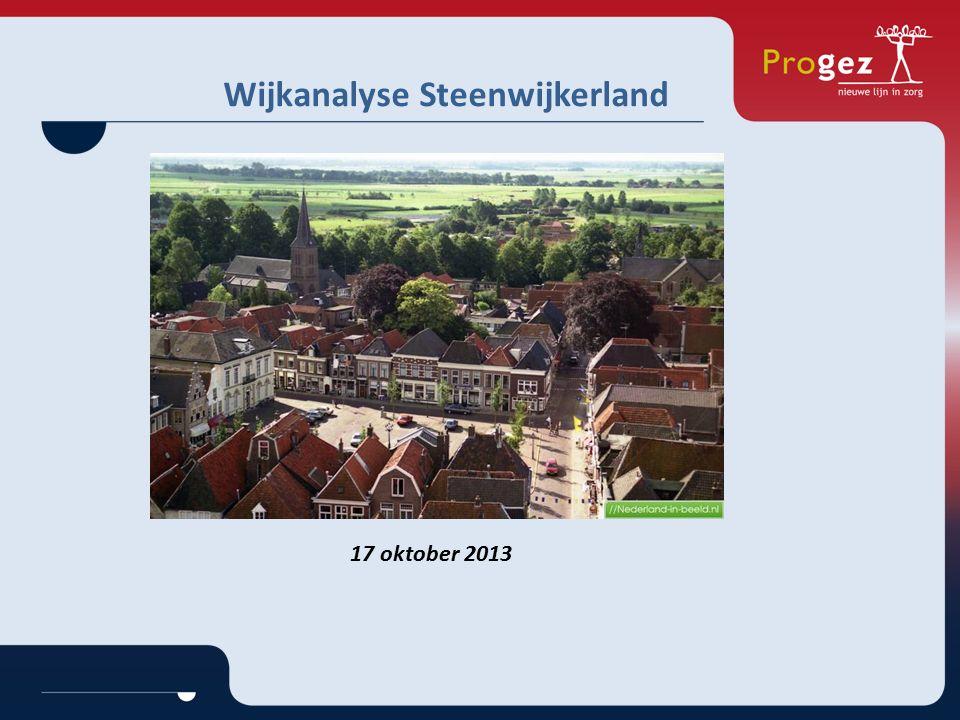 Wijkanalyse Steenwijkerland 17 oktober 2013