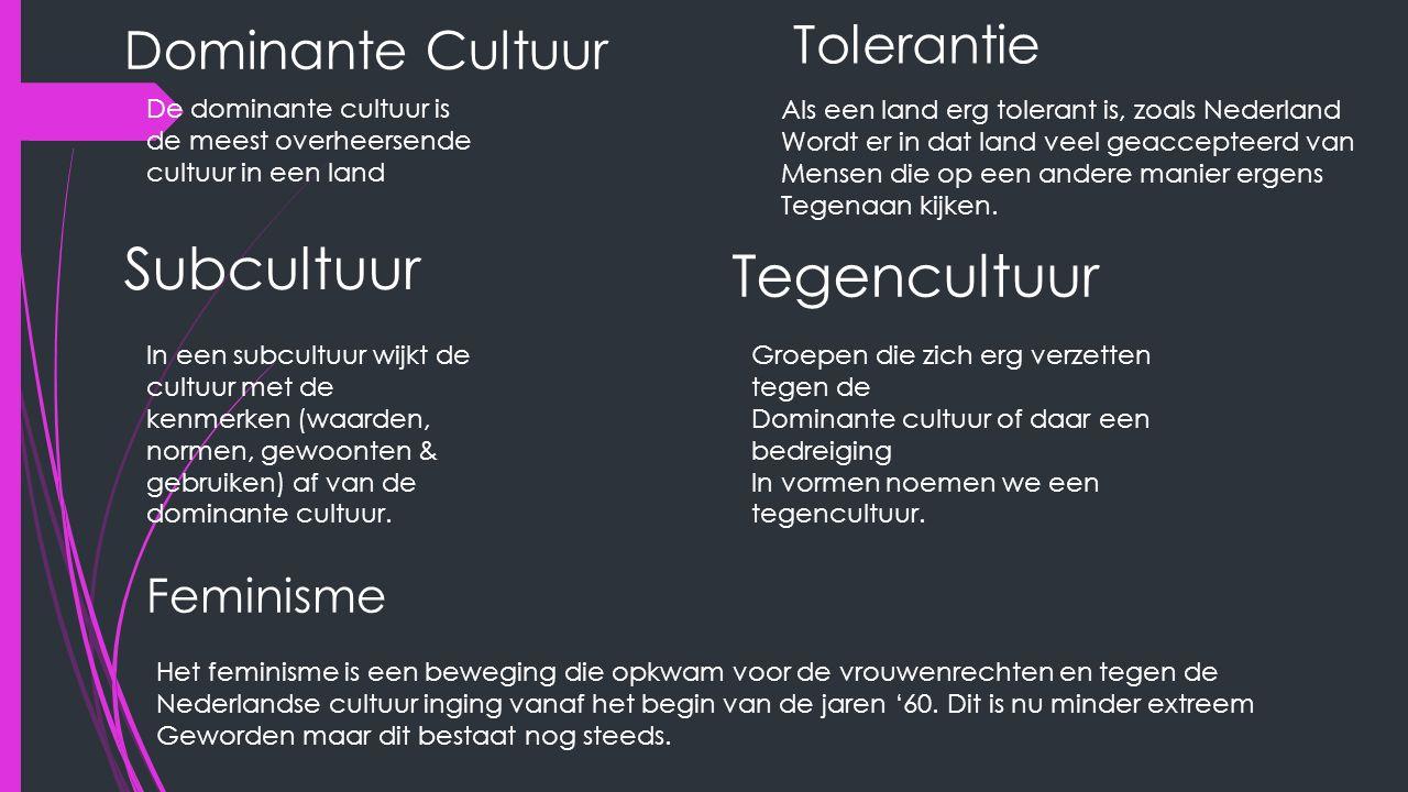 Dominante Cultuur De dominante cultuur is de meest overheersende cultuur in een land Tolerantie Als een land erg tolerant is, zoals Nederland Wordt er in dat land veel geaccepteerd van Mensen die op een andere manier ergens Tegenaan kijken.