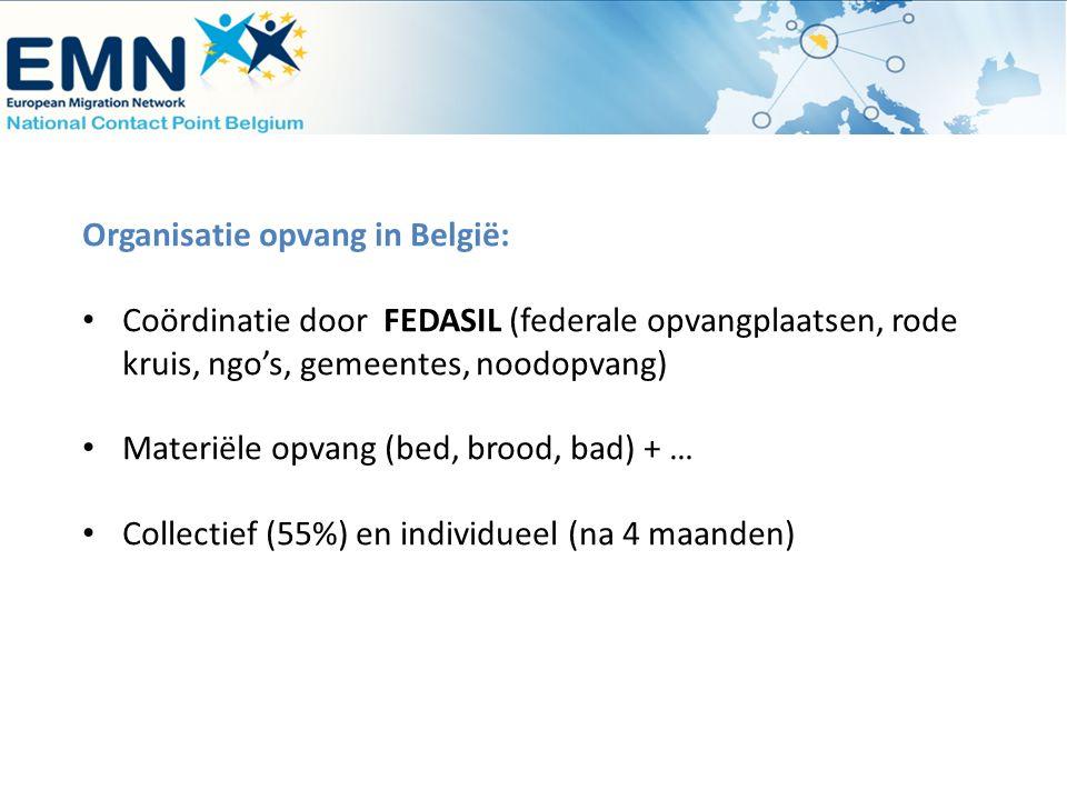 Organisatie opvang in België: Coördinatie door FEDASIL (federale opvangplaatsen, rode kruis, ngo's, gemeentes, noodopvang) Materiële opvang (bed, broo